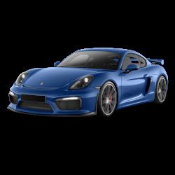 Cayman (718) GT4 2016-